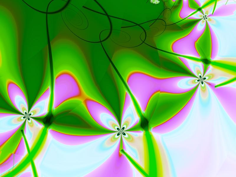 Fractal Art Wallpaper, Four Petals Flower