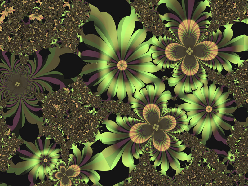fractal Flowers Wallpaper Flower Backgrounds