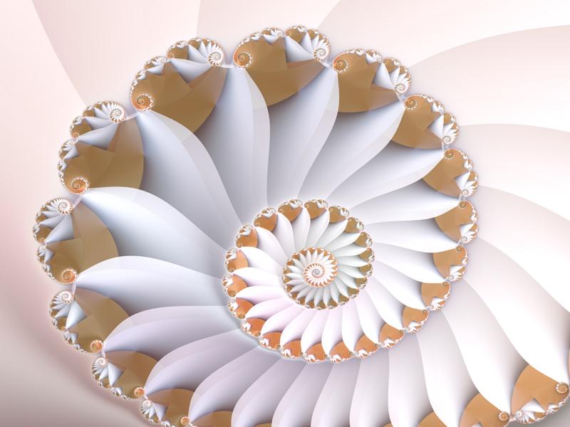 Fractal Art Wallpaper, White Nautilus Wallpaper