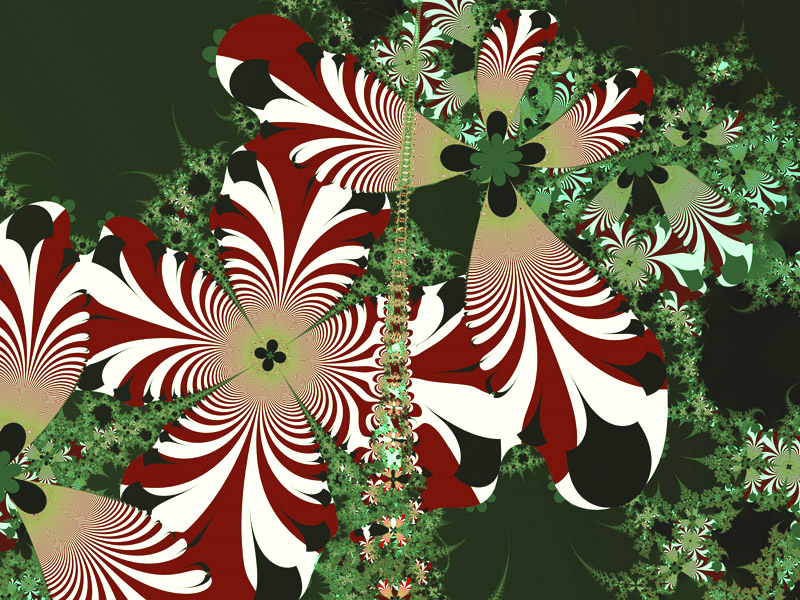 http://www.abm-enterprises.net/fractal-art/winter-flowers-wallpaper.jpg